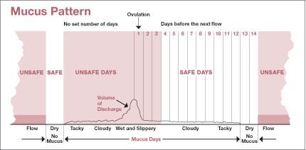 Metode Mukosa Serviks (Cervical Mucus Method Or Ovulasi Billings) (Bagian 3)